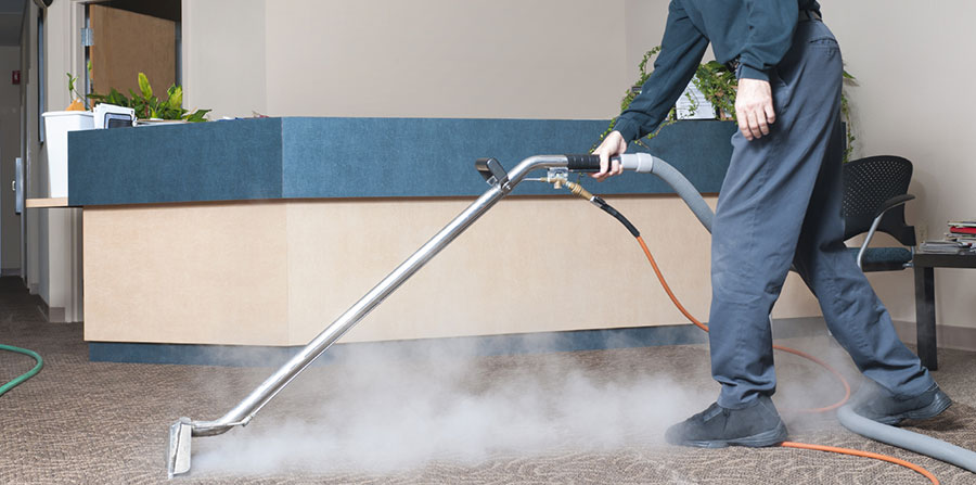 Image result for professional carpet steam cleaning